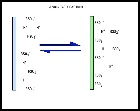 Anionic Surfactant | Absorption of Charges Species