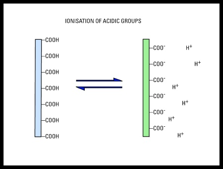 Ionization of Silver Acidic Groups - Surface Groups