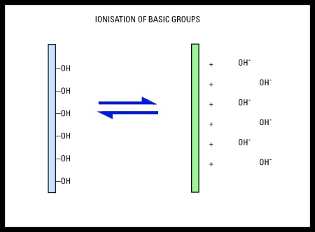 Ionization of Silver Basic Groups - Surface Groups